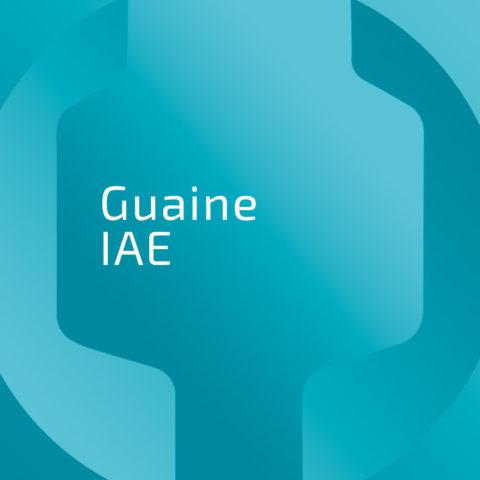 imm-GUAINE